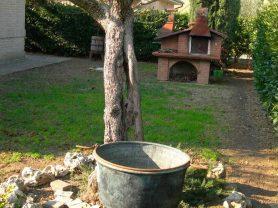 Agenzia Immobiliare Caporalini - Villa - Annuncio SS650 - Foto: 11