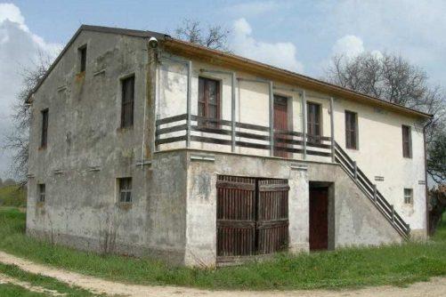 Agenzia Immobiliare Caporalini: Annuncio SS618