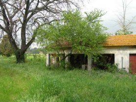 Agenzia Immobiliare Caporalini - Casa colonica - Annuncio SS618 - Foto: 10