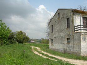 Agenzia Immobiliare Caporalini - Casa colonica - Annuncio SS618 - Foto: 7
