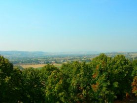 Immobiliare Caporalini real-estate agency - Detached house - Ad SS638 - Picture: 21