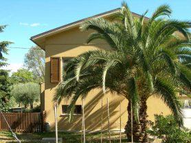 Agenzia Immobiliare Caporalini - Casa colonica - Annuncio SS587 - Foto: 20