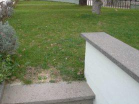 Agenzia Immobiliare Caporalini - Villa - Annuncio SS607 - Foto: 20