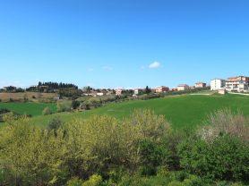 Immobiliare Caporalini real-estate agency - Apartment - Ad SS639 - Picture: 28
