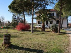 Immobiliare Caporalini real-estate agency - Apartment - Ad SS651-1 - Picture: 35