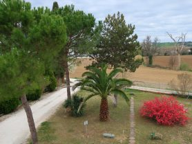 Immobiliare Caporalini real-estate agency - Semi-detached house - Ad SS651 - Picture: 6