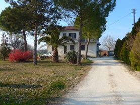 Immobiliare Caporalini real-estate agency - Semi-detached house - Ad SS651 - Picture: 8