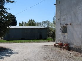 Immobiliare Caporalini real-estate agency - Farmhouse or Country House - Ad SS600 - Picture: 9