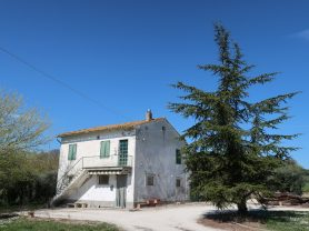 Immobiliare Caporalini real-estate agency - Farmhouse or Country House - Ad SS600 - Picture: 0