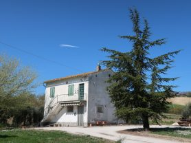 Immobiliare Caporalini real-estate agency - Farmhouse or Country House - Ad SS600 - Picture: 11