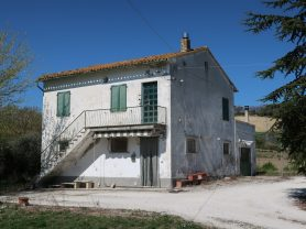Immobiliare Caporalini real-estate agency - Farmhouse or Country House - Ad SS600 - Picture: 2