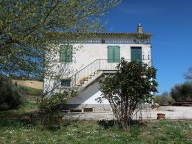 Immobiliare Caporalini real-estate agency - Farmhouse or Country House - Ad SS600 - Picture: 4