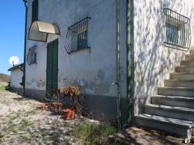 Immobiliare Caporalini real-estate agency - Farmhouse or Country House - Ad SS600 - Picture: 6