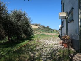 Immobiliare Caporalini real-estate agency - Farmhouse or Country House - Ad SS600 - Picture: 7