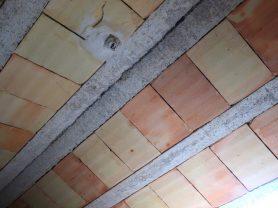 Agenzia Immobiliare Caporalini - Casa indipendente - Annuncio SS655 - Foto: 7