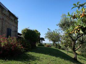 Immobiliare Caporalini real-estate agency - Villa - Ad SS660 - Picture: 91