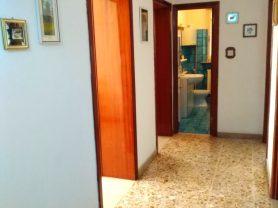 Immobiliare Caporalini real-estate agency - Apartment - Ad SR530 - Picture: 6