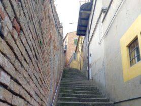Agenzia Immobiliare Caporalini - Appartamento - Annuncio SR538-1 - Foto: 5