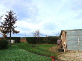 Agenzia Immobiliare Caporalini - Casa colonica - Annuncio SS668 - Foto: 16