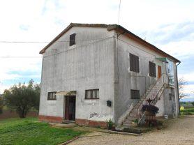 Agenzia Immobiliare Caporalini - Casa colonica - Annuncio SS668 - Foto: 3