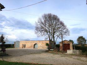 Agenzia Immobiliare Caporalini - Casa colonica - Annuncio SS668 - Foto: 45