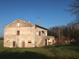 Immobiliare Caporalini real-estate agency - Farmhouse or Country House - Ad SS680 - Picture: 9
