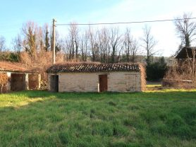 Immobiliare Caporalini real-estate agency - Farmhouse or Country House - Ad SS680 - Picture: 12