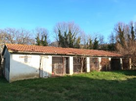 Immobiliare Caporalini real-estate agency - Farmhouse or Country House - Ad SS680 - Picture: 13
