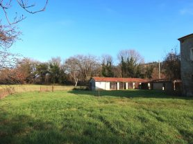 Immobiliare Caporalini real-estate agency - Farmhouse or Country House - Ad SS680 - Picture: 14