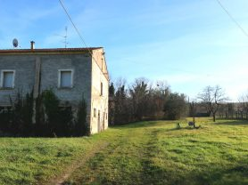 Immobiliare Caporalini real-estate agency - Farmhouse or Country House - Ad SS680 - Picture: 17