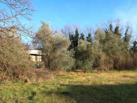 Immobiliare Caporalini real-estate agency - Farmhouse or Country House - Ad SS680 - Picture: 5