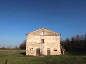 Immobiliare Caporalini real-estate agency - Farmhouse or Country House - Ad SS680 - Picture: 8
