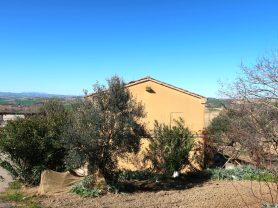 Agenzia Immobiliare Caporalini - Casa colonica - Annuncio SS677 - Foto: 39