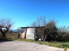 Agenzia Immobiliare Caporalini - Casa colonica - Annuncio SS677 - Foto: 40