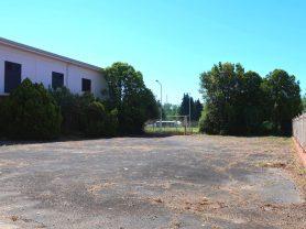 Agenzia Immobiliare Caporalini - Casa singola - Annuncio SS690 - Foto: 3