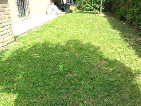 Agenzia Immobiliare Caporalini - Appartamento - Annuncio SS695 - Foto: 36