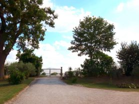 Agenzia Immobiliare Caporalini - Casa colonica - Annuncio SS699 - Foto: 25