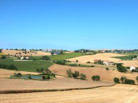 Agenzia Immobiliare Caporalini - Casa colonica - Annuncio SS699 - Foto: 32