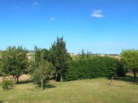 Agenzia Immobiliare Caporalini - Casa colonica - Annuncio SS699 - Foto: 35