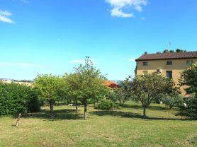 Agenzia Immobiliare Caporalini - Casa colonica - Annuncio SS699 - Foto: 36