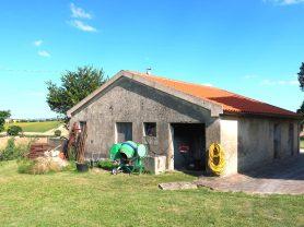 Agenzia Immobiliare Caporalini - Casa colonica - Annuncio SS699 - Foto: 7