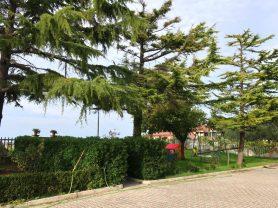 Agenzia Immobiliare Caporalini - Appartamento - Annuncio SS702 - Foto: 29
