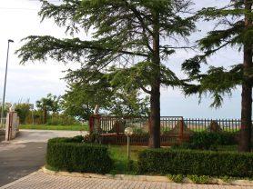 Agenzia Immobiliare Caporalini - Appartamento - Annuncio SS702 - Foto: 33