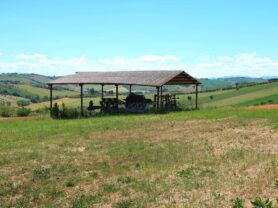 Agenzia Immobiliare Caporalini - Casa colonica - Annuncio SR590 - Foto: 9