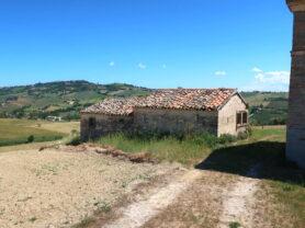 Agenzia Immobiliare Caporalini - Casa colonica - Annuncio SR590 - Foto: 2