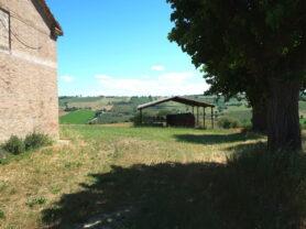 Agenzia Immobiliare Caporalini - Casa colonica - Annuncio SR590 - Foto: 5