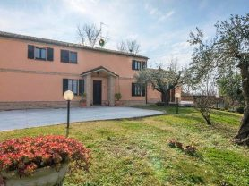 Immobiliare Caporalini real-estate agency - Farmhouse or Country House - Ad SS621 - Picture: 0