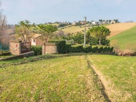 Immobiliare Caporalini real-estate agency - Farmhouse or Country House - Ad SS621 - Picture: 11